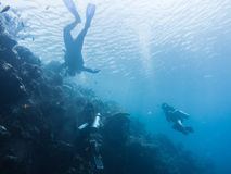 Snorkelers and divers in the sea. Snorkelers and divers in the blue sea Stock Images
