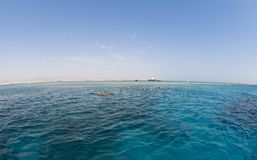 Snorkelers exploring the clear Red Sea. Stock Photos