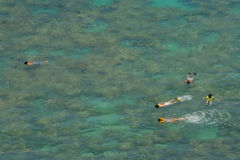 Snorkelers over coral reef in shallow tropical bay. Kids snorkeling together over coral reef in shallow tropical waters of Hanauma Bay, Hawaii Stock Photo