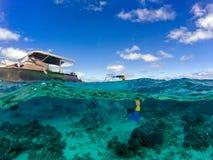 Snorkeling в водах полинезии тропических кристаллических Стоковые Изображения RF