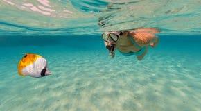 Snorkeling женщина исследуя красивое sealife океана, подводный p Стоковое Фото