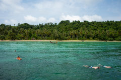 Snorkeling на острове кораллового рифа Стоковая Фотография
