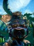 Snorkeling с красочными рыбами Стоковые Изображения