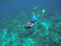 Snorkeling с морской черепахой Шноркель в желтых ребрах Стоковые Фото