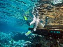 snorkeling royaltyfria foton