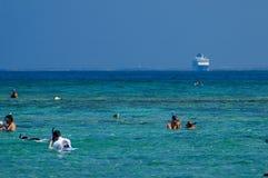 Snorkeling Imagens de Stock