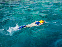 Snorkeling. A man snorkeling in the Red Sea Royalty Free Stock Images