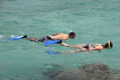 Snorkeling 2 Stock Photography
