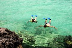 Snorkeling. Snorkel diving in emerald water near Rivera Maya shore royalty free stock photography