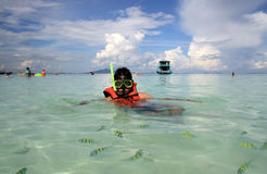Snorkeling. Young man snorkeling at Phi Phi island in Thailand Royalty Free Stock Image