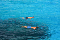 Snorkeling. Two people snorkeling at crystal clear blue water Royalty Free Stock Photo