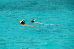 Snorkeling. In aqua tropical waters Royalty Free Stock Photo