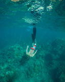 Snorkeling. Young man free diving and snorkeling on a lively reef royalty free stock photography
