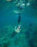 Snorkeling Fotografia Royalty Free