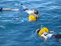 Snorkeling. A family snorkeling over a coral reef in the Florida Keys Stock Images