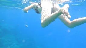 snorkeling almacen de video
