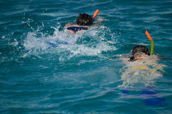 Snorkeling. Pair snorkeling in red sea royalty free stock photography