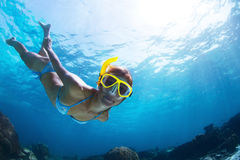 snorkeling images stock