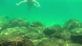 snorkeling almacen de metraje de vídeo