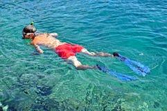 snorkeling Стоковые Изображения