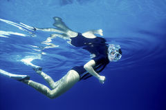 Snorkeling Fotografia de Stock