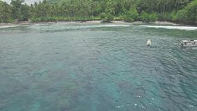 Snorkeling Above Reef Shallow Water Tropical Aerial 4k. Aerial footage of a girl snorkeling in a shallow water bay in Nusa Penida, Indonesia stock video footage