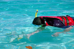 Snorkeling activity Stock Photos