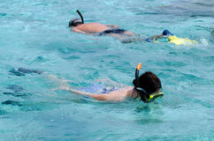 Snorkeling in Aitutaki Lagoon Cook Islands Royalty Free Stock Photo