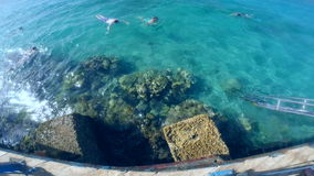 Snorkeling in the beautiful sea. near the corals and fish. cyan warm water. active lifestyle. rest and vacation. summer and tropic. Al. have fun stock video