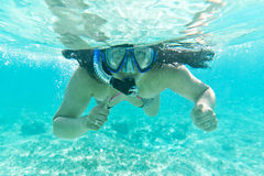 Snorkeling in the Caribbean Sea Royalty Free Stock Images