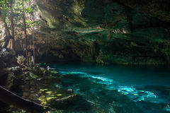 Snorkeling Cenote cavern at Tulum. Cancun. Traveling Through Mex Royalty Free Stock Photography