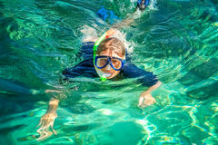 Snorkeling in clear waters Royalty Free Stock Image