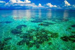 Snorkeling in clear waters Royalty Free Stock Images