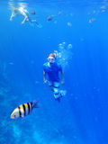 Snorkeling debaixo d'água Foto de Stock