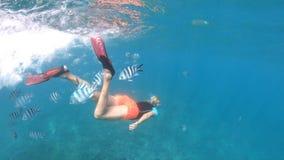 Snorkeling dziewczyna w Seychelles rozszczepia widok zbiory