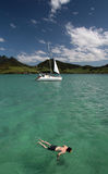 Snorkeling em Maurícia Fotos de Stock