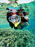 Snorkeling female Stock Image