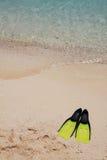 Snorkeling fins Stock Image
