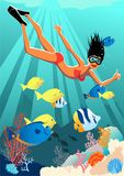 Snorkeling girl. Young woman snorkeling at the coral reef and giving a thumb up, corals and tropical fish on the background,  cartoon, vertical Stock Image