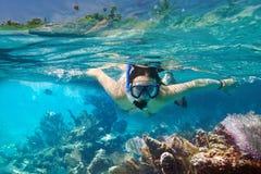 Snorkeling i det tropiskt bevattnar av Mexico Fotografering för Bildbyråer