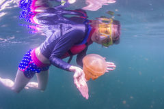 Snorkeling in Jellyfish Stock Photo