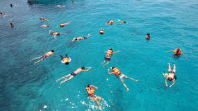 Snorkeling in Koh Chang Thailand Royalty Free Stock Photo