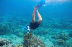 Snorkeling mężczyzna nurkuje rafa koralowa Męski snorkel w tropikalnej laguny podwodnej fotografii Obraz Royalty Free