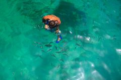 Snorkeling mężczyzna z ryba Obraz Stock