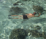 Snorkeling man Stock Photo
