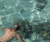 Snorkeling man Royalty Free Stock Photos