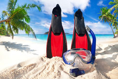 Snorkeling mask and fins on the beach Stock Image