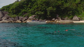 Snorkeling near Similans stock video footage