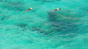 Snorkeling near Similans stock video