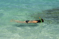 Snorkeling nos tropics Fotos de Stock Royalty Free
